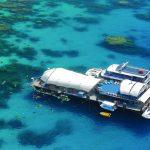 Great Adventures Cairns