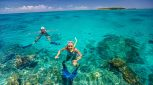 This half-day reef tour from Cairns includes snorkelling, glass-bottom boat tour, Eco walk swimming pool, kiosk. Enjoy Green Island today