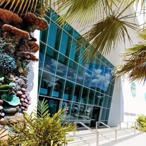 Cairns Aquarium and Green Island