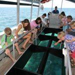Glass Bottom Boat